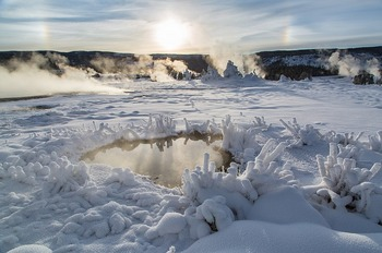 rime-ice-1927888_640.jpg